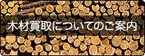 木材買取についてのご案内